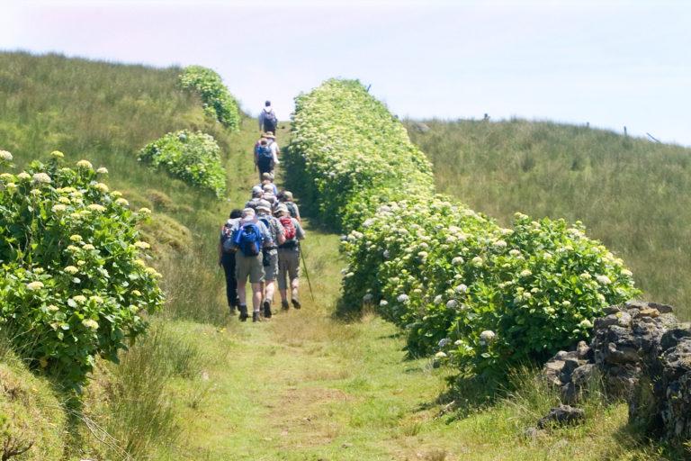 Percursos Pedestres, Ilha de São Jorge