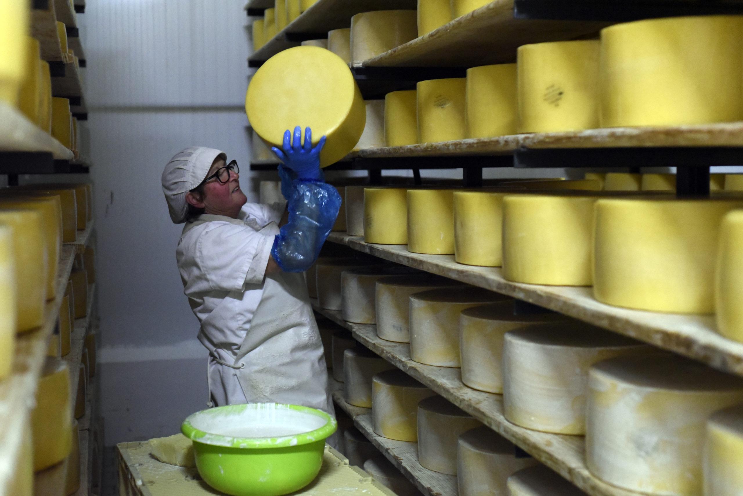_DSC2445 queijo sao jorge