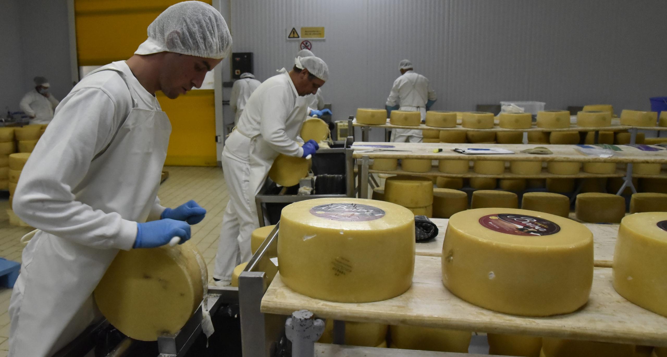 _DSC3386 queijo sao jorge