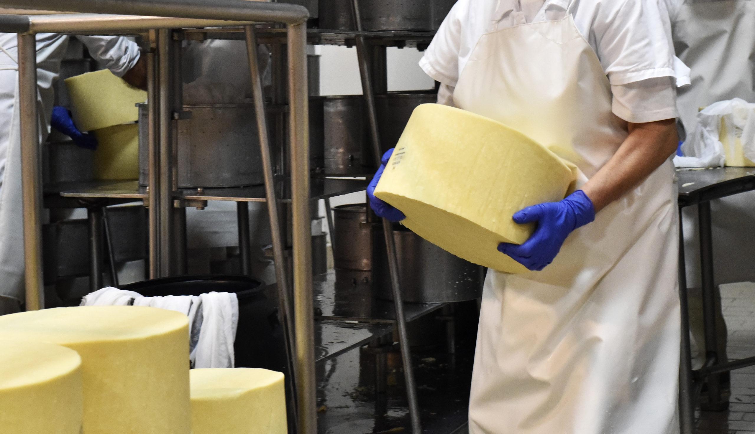 _DSC9197 uniao coop queijo sao jorge