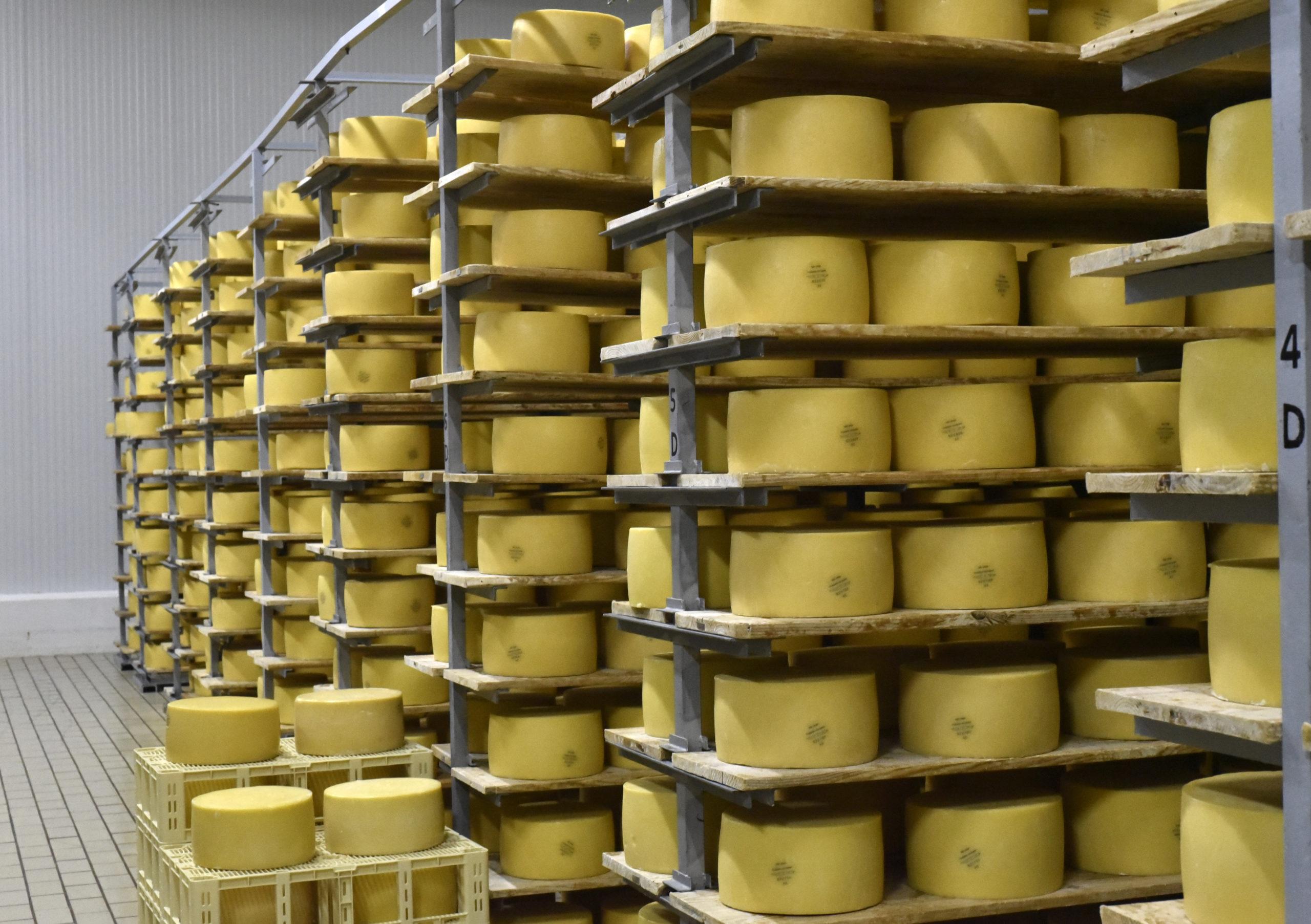 _DSC9278 uniao coop queijo sao jorge